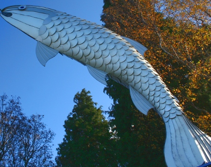 Metal-fish-taupo-nz